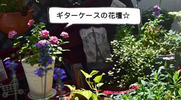 仲山ギター教室_ガーデン